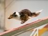 Miep Miep ... Seeya my Dogwalkrunner :D Foto by Dani Barth